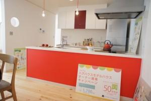 注文住宅 かっこいい工務店 ハウスデザイン イエプラン 栃木県宇都宮市江曽島 モデルハウスオープン オープンキッチン