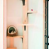注文住宅 かっこいい工務店 京都府 福知山市 ADACHI住建 足立住建 おうち屋さん 新築 施工例5 猫 階段